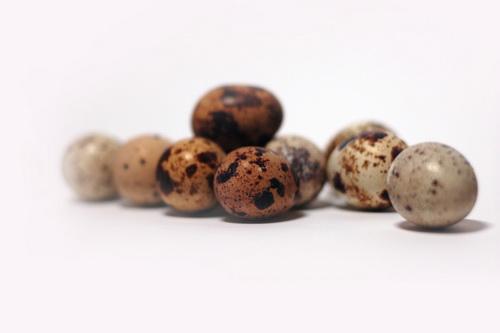 Перепелиные яйца - похожи на далматиновую пятнистую яшму